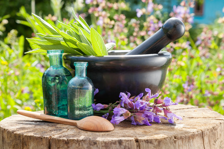 oil tool: Black mortar with sage herbs, glass bottles of essential oil outdoors. Herbal medicine. Stock Photo