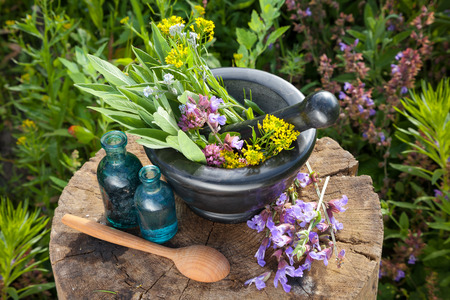 botanical remedy: Mortar with healing herbs and sage, bottles of essential oil in garden. Herbal medicine. Stock Photo