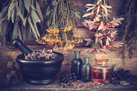 Jahrgang stilisierte Foto von Heilkräutern Trauben, schwarz Mörtel und Ölflaschen, Kräutermedizin. Lizenzfreie Bilder