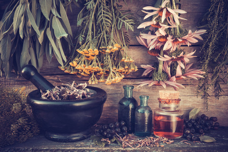 essential oil: Vintage stylized photo of  healing herbs bunches, black mortar and oil bottles, herbal medicine. Stock Photo