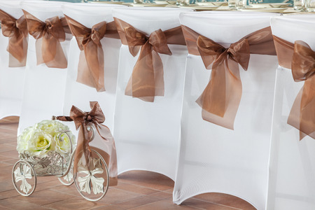 wedding chairs: Row of wedding chairs with brown ribbons.