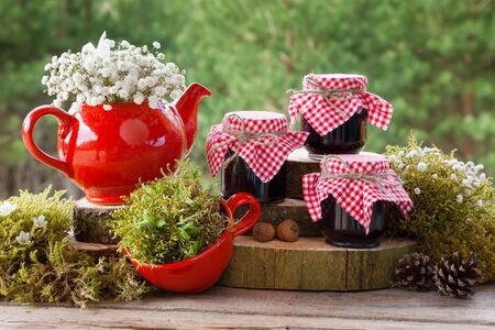 forest tea: Red teapot, tea cup and jars of  healthy jam. Forest on background. Stock Photo