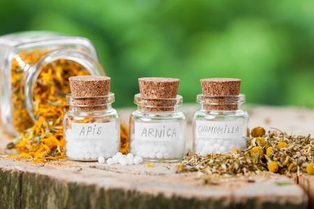 homeopatía: Tres botellas de glóbulos de homeopatía y hierbas saludables.