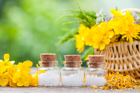 chamomilla: Bottles of homeopathy globules and healthy herbs in wicker basket. Stock Photo