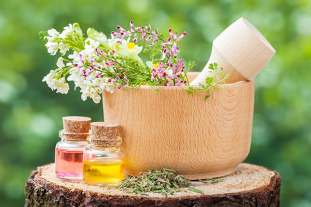 Rustic mortar with healing herbs and bottles with essential oil on wooden stump outdoors.