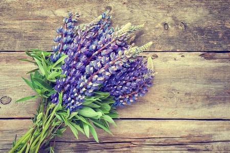 ramo de flores: Manojo de flores de lupino azul sobre fondo de madera.