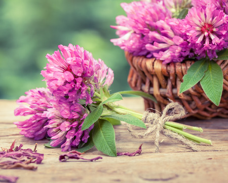 life style: Bunch of clover and basket with flowers, retro stylized