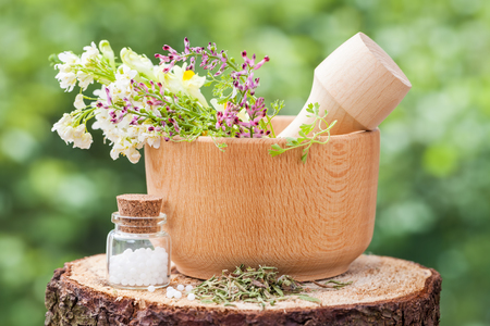 globules: Mortar with healing herbs and bottle of homeopathy globules on wooden stump outdoors.