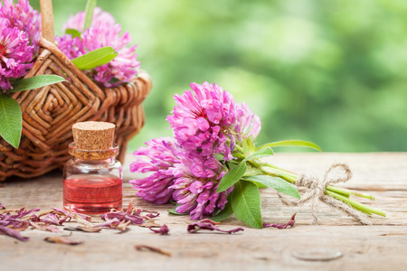 Bottle of elixir or essential oil, bunch of clover and flower in basket.