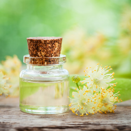 linden blossom: Bottle of essential linden oil and yellow lime flowers.