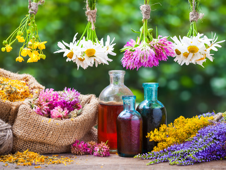 Healing herbs bunches, bottle of oil or tincture, hessian bags with dried marigold and clover. Herbal medicine.