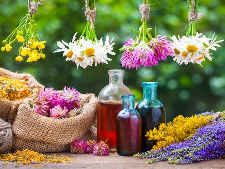 Manojos de hierbas curativas, botella de aceite o tintura, bolsas de arpillera con caléndula seca y trébol. Medicina herbaria.