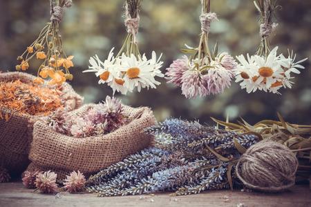 flores secas: Curación hierbas racimos y bolsas de arpillera con secado caléndula, el trébol y la manzanilla. Medicina herbaria.