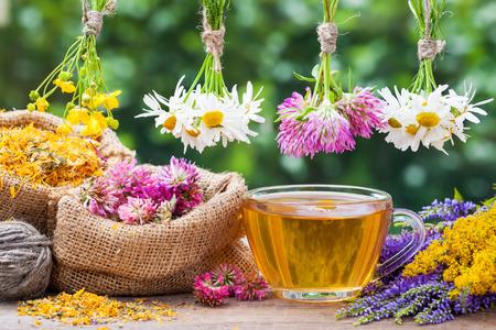 Heilende Kräuter bunchesm, Hessische Beutel mit getrockneten Pflanzen und Tasse Tee gesund. Pflanzenheilkunde.