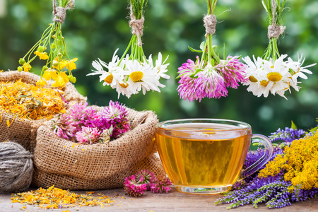 hierbas: Hierbas curativas bunchesm, bolsas de arpillera con plantas secas y taza de té saludable. Medicina herbaria.