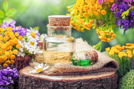 Flessen van etherische olie of drankje, geneeskrachtige kruiden en wilde bloemen. Kruidenmedicijn. Stockfoto