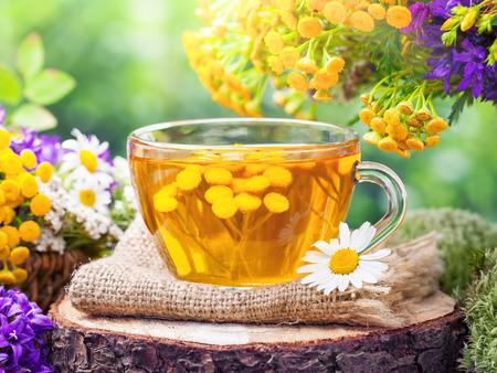 Kop van gezonde tancy thee en helende herbs.Herbal geneeskunde.