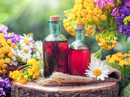 Flessen tinctuur of cosmetisch product en geneeskrachtige kruiden en wilde bloemen. Kruidenmedicijn. Stockfoto