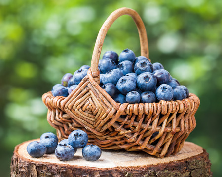 Basket with ripe blueberries on stump