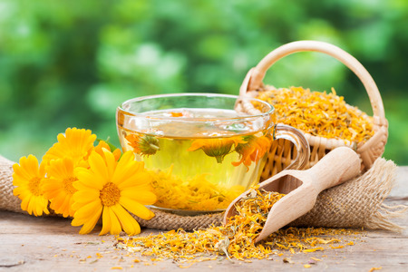 calendula: Cup of healthy marigold tea and calendula flowers.