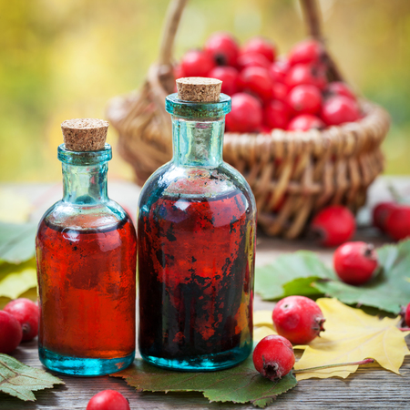 Bottles of hawthorn berries tincture and red thorn apples in basket on wooden table with autumn maple leaves. Herbal medicine. Selective focus.