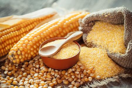 mazorca de maiz: grañones de maíz y semillas secas, mazorcas de maíz en la mesa rústica de madera. enfoque selectivo