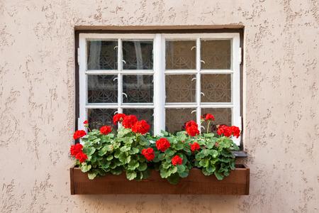 Window versierd met bloemen van de Geranium