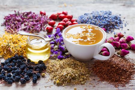 dried herb: Cup of healthy tea, honey, healing herbs, herbal tea assortment and berries on table. Herbal medicine.