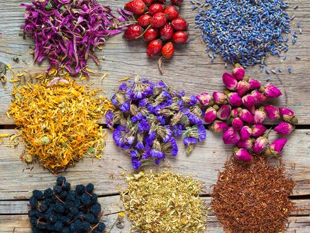 Healing herbs and herbal tea assortment and berries on table. Herbal medicine. Foto de archivo