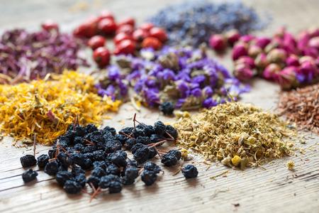 Geneeskrachtige kruiden, kruidenthee-assortiment en gezonde bessen op houten tafel. Kruidenmedicijn. Stockfoto