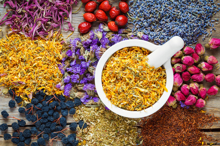Mörtel von trockenen Ringelblumen, gesunde Kräuter, Kräuter-Tee-Sortiment und Beeren auf alten Holztisch. Pflanzenheilkunde.