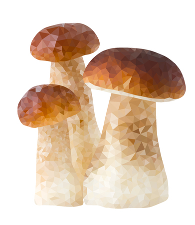 boletus: Three mushrooms in low poly style, polygon vector triangle boletus on white background