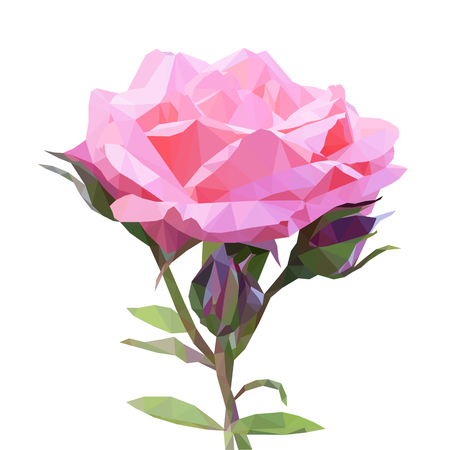 Beautiful pink rose in low poly style, polygon triangle flower on white