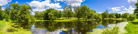 Beautiful summer panoramic landscape, Belarus 스톡 콘텐츠