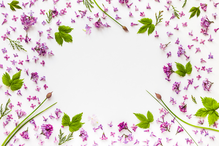 leaves frame: Frame of fresh lilac flowers and green hop leaves on white background. Flat lay border composition, top view.