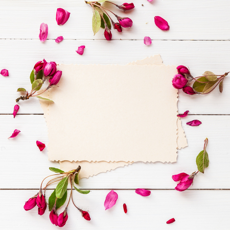 Old empty photo for the inside and frame of apple flowers on white wooden background. Flat lay, top view.