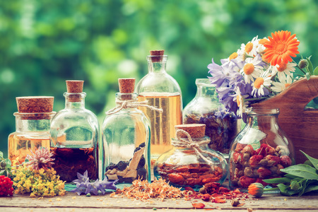 Bottles of tincture or potion and dry healthy herbs, bunch of healing herbs in wooden box on table outdoors. Herbal medicine. Retro styled.