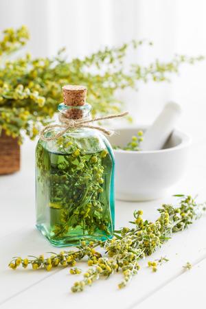 absinthe: Botella de tintura ausente o de estrag�n, hierbas curativas ajenjo y el mortero en el vector blanco. Medicina herbaria. Foto de archivo