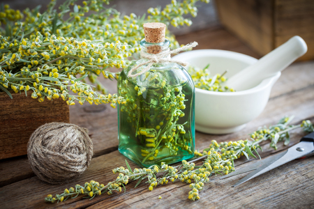 Bottle of absent or tincture of tarragon healthy herbs, absinthe healing herbs, scissors and mortar. Herbal medicine. Stock Photo