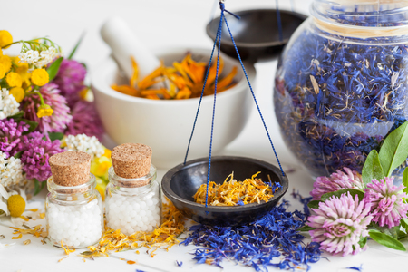 globules: Bottles of homeopathy globules, scales, jar and mortar of healthy herbs. Selective focus. Herbal medicine.