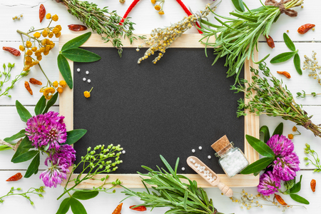 Empty blackboard, border from healing herbs, bottle of homeopathic globules. Top view, flat lay. Stock Photo