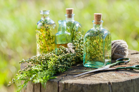 tarragon: Bottles of thyme, estragon and rosemary essential oil or infusion outdoors, herbal medicine.