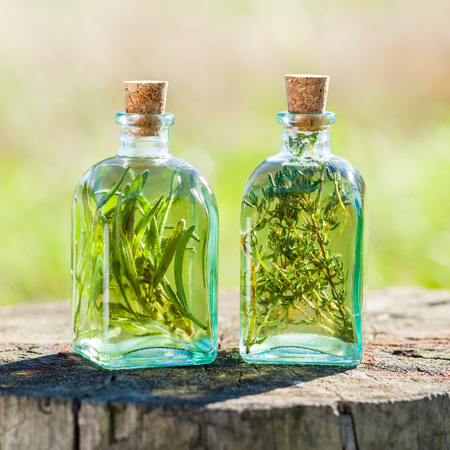 Bottles of thyme and rosemary essential oil or infusion outdoors, herbal medicine. Foto de archivo
