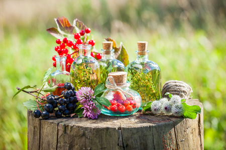 guelder: Transparent bottles of tincture, healthy herbs and berries on wooden stump outdoors, herbal medicine. Stock Photo