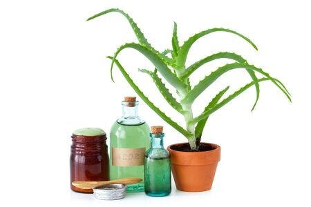 productos naturales: Aloe plant in flowerpot, organic aloe vera essence, cream or salve and other products on white.