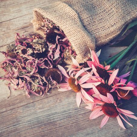 retro flowers: Bunch of healing coneflowers and sack with dried echinacea flowers on wooden board, herbal medicine. Retro toned photo.