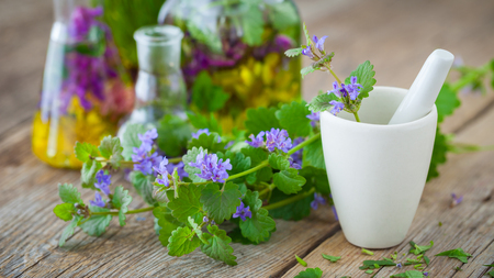 elixir: Mortar of healing herbs and bottles of healthy tincture or infusion on background. Herbal medicine concept.
