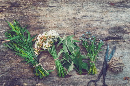 Bunches of healing herbs, old scissors on board. Herbal medicine. Top view, flat lay.