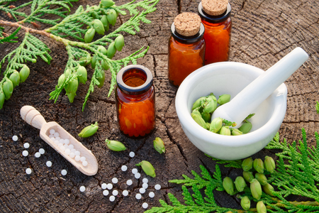 Bottles of homeopathic globules, Thuja occidentalis drugs, mortar and pestle. Homeopathy medicine concept.