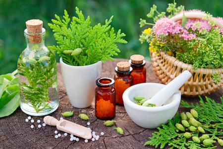 Bouteilles de globules homéopathiques. Thuya, plantain, infusion saine, mortier et panier d'herbes. Homéopathie
